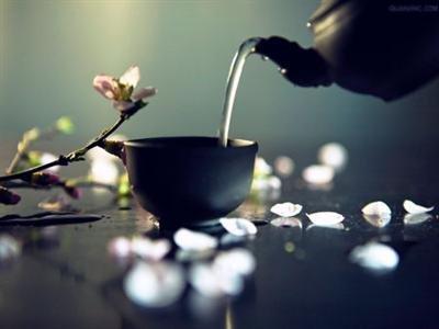 禅茶真境:无一物中物尽藏