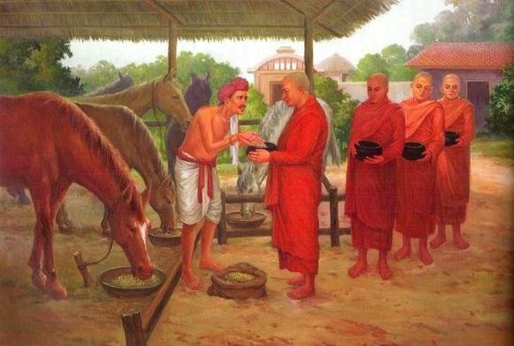 马麦与佛陀有何因缘?